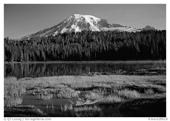 Reflection Lake and Mt Rainier, early morning. Mount Rainier National Park (black and white)