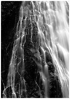 Narada falls. Mount Rainier National Park, Washington, USA. (black and white)
