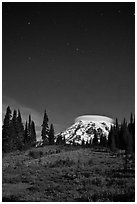 Mount Rainier and stars by night. Mount Rainier National Park, Washington, USA. (black and white)