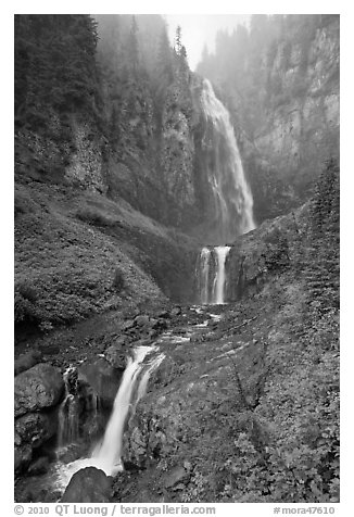 Comet Falls in the fog. Mount Rainier National Park (black and white)