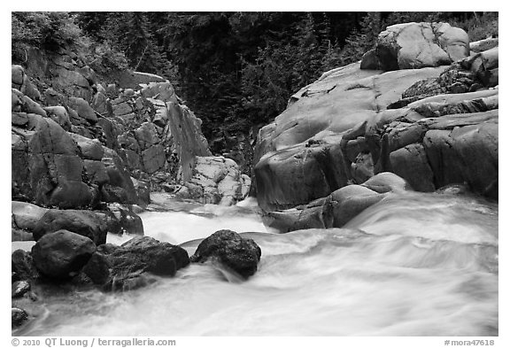 Water flowing down gorge. Mount Rainier National Park (black and white)