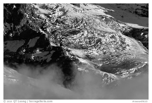 Glaciers and fog. Mount Rainier National Park (black and white)