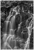 Water cascading over columns of volcanic rock. Mount Rainier National Park ( black and white)