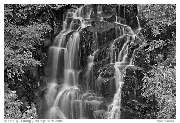 Waterfall over volcanic rock, Stevens Canyon. Mount Rainier National Park (black and white)