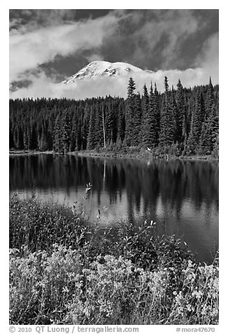 Mount Rainier and clouds seen from reflection lakes. Mount Rainier National Park (black and white)