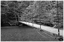 Suspension footbridge over Ohanapecosh River. Mount Rainier National Park, Washington, USA. (black and white)