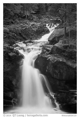 Silver Falls. Mount Rainier National Park (black and white)