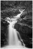 Silver Falls. Mount Rainier National Park ( black and white)