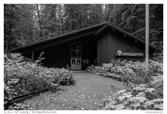 Ohanapecosh Visitor Center. Mount Rainier National Park (black and white)