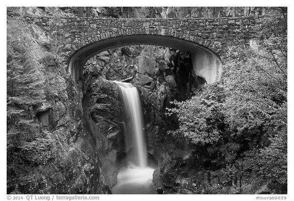 Stone Bridge and Christine Falls. Mount Rainier National Park (black and white)