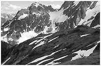 Mule deer and peaks, early summer, North Cascades National Park. Washington, USA. (black and white)