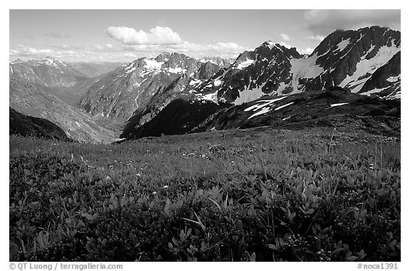 Stehekin Valley seen from Sahale Arm, North Cascades National Park.  (black and white)