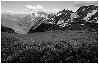 Stehekin Valley seen from Sahale Arm, North Cascades National Park. Washington, USA. (black and white)