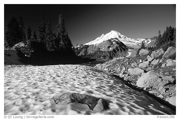 Late summer snow and Mount Baker, early morning. Washington (black and white)