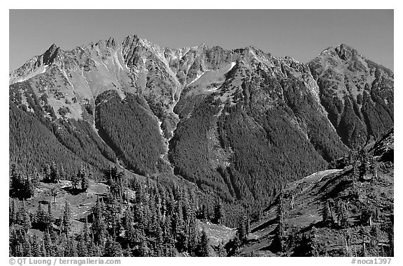 Steep forested peaks, North Cascades National Park.  (black and white)