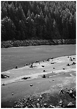 Tree stumps and river, North Cascades National Park Service Complex. Washington, USA. (black and white)