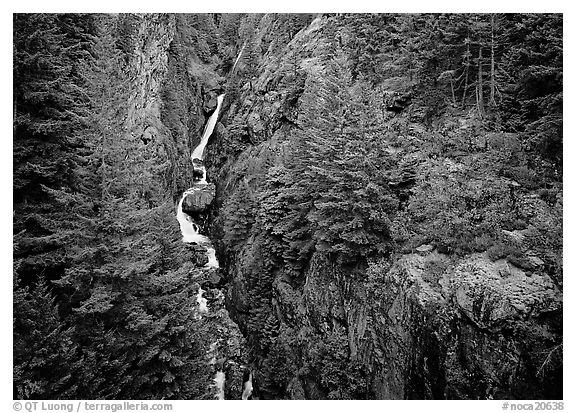 Gorge Creek falls in summer, North Cascades National Park Service Complex.  (black and white)