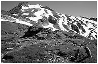 Marmots and Sahale Peak, morning, North Cascades National Park. Washington, USA. (black and white)