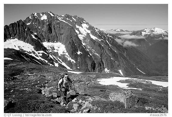 Mountaineer hiking on the way to Sahale Peak,  North Cascades National Park.  (black and white)