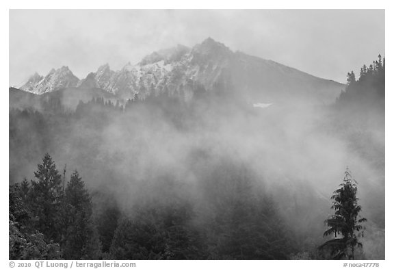Peaks and fog, North Cascades National Park.  (black and white)