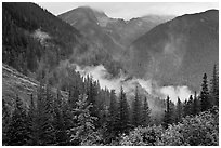 North Fork of the Cascade River Valley, North Cascades National Park.  ( black and white)