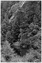 Skagit River gorge, North Cascades National Park Service Complex.  ( black and white)