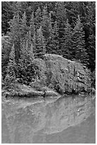 Trees and boulders reflected in Gorge Lake, North Cascades National Park Service Complex. Washington, USA. (black and white)