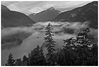 Diablo Lake and fog, dawn, North Cascades National Park Service Complex.  ( black and white)