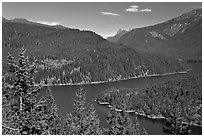 Ross Lake, morning,  North Cascades National Park Service Complex.  ( black and white)