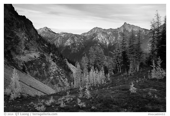 Visitor looking, Easy Pass, North Cascades National Park.  (black and white)