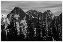 Fisher Peak trees at sunset, North Cascades National Park.  ( black and white)