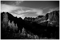 Larch trees and Fisher Creek cirque at night, North Cascades National Park.  ( black and white)