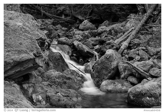 Creek flowing over mossy rocks, North Cascades National Park Service Complex.  (black and white)