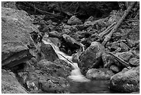 Creek flowing over mossy rocks, North Cascades National Park Service Complex.  ( black and white)