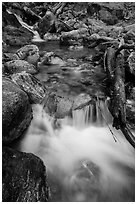 Cascading creek, North Cascades National Park Service Complex.  ( black and white)