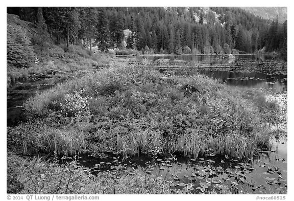 Coon Lake in the fall, North Cascades National Park Service Complex.  (black and white)