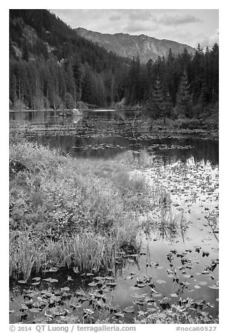 Mountains reflected in Coon Lake in autumn, North Cascades National Park Service Complex.  (black and white)