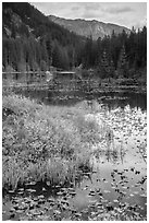 Mountains reflected in Coon Lake in autumn, North Cascades National Park Service Complex.  ( black and white)