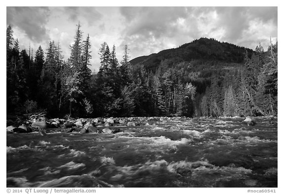 Stehekin River, looking up valley, North Cascades National Park Service Complex.  (black and white)