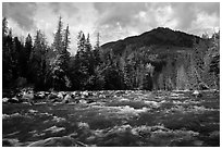 Stehekin River, looking up valley, North Cascades National Park Service Complex.  ( black and white)