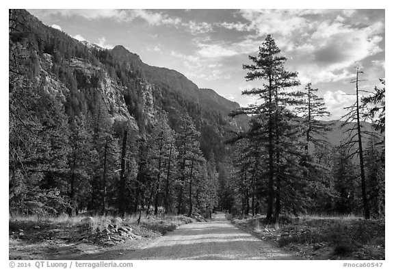 Road, Stehekin Valley, North Cascades National Park Service Complex.  (black and white)