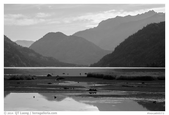 Pond and Lake Chelan, Stehekin, North Cascades National Park Service Complex.  (black and white)