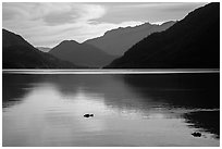 Lake Chelan reflections, Stehekin, North Cascades National Park Service Complex.  ( black and white)