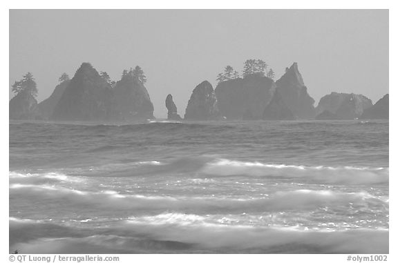 Waves and seastacks, Shi-Shi Beach. Olympic National Park (black and white)
