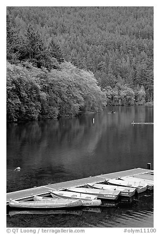 Small boats moored in emerald waters in Crescent Lake. Olympic National Park (black and white)