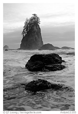 Rocks, seastacks and surf, Second Beach. Olympic National Park (black and white)