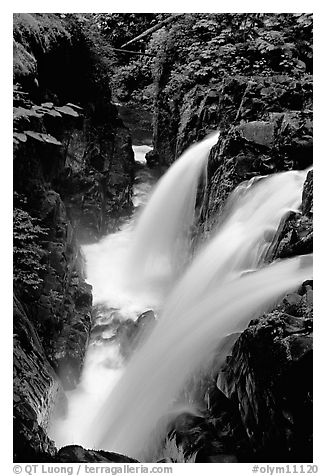 Sol Duc falls. Olympic National Park (black and white)