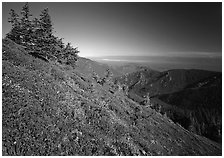 Looking towards  Strait of San Juan de Fuca from Hurricane hill. Olympic National Park ( black and white)