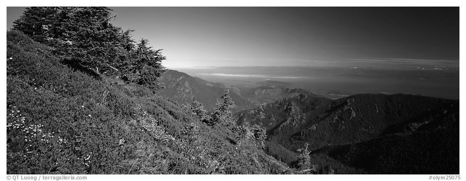View over marine straight from mountains. Olympic National Park (black and white)