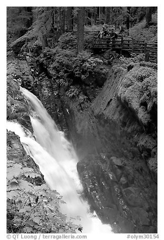 Sol Duc falls and observation platform. Olympic National Park (black and white)